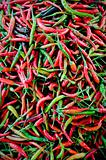 Red and green chillies for sale