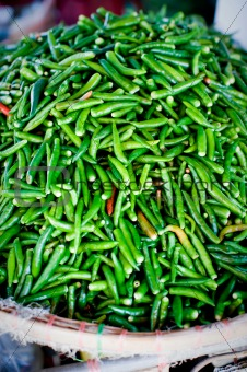 Green chillies for sale