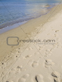 Beach Detail