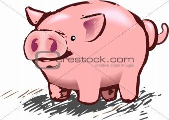 A cute piggy pig