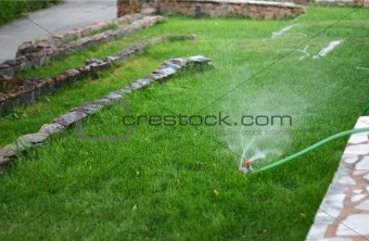 watering of lawn