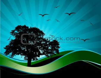 Old tree silhouette, season background