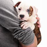 Man holding puppy in his arms