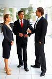 Sophisticated confident  business people in formals standing and discussing on business issues
