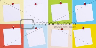 blank note pads