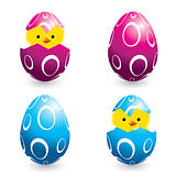 colorful easter eggs and hatching chicks