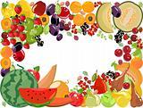 Fruits,vector