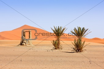 Arabian Sand Dunes and fountain