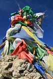UCB (United Colors of Buddhism)