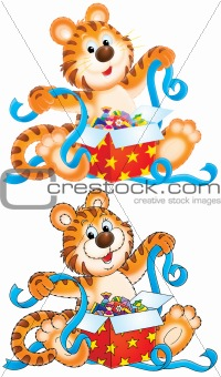 Tiger cub with gift