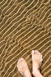 Feet in shallow water