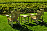 Chairs overlooking vineyard