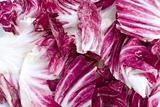Bunch of Radicchio
