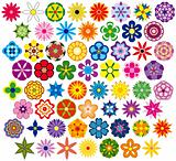Sixty fabulous flowers