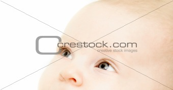 close up baby portrait over white