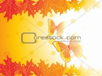 autumn leaves and butterfly, vector