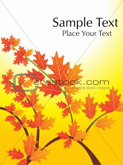 autumn leaves with sample text, vector