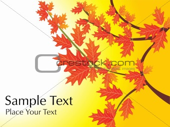 background, autumn leaves with sample text
