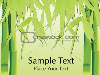 green bamboo with its leaf, vector