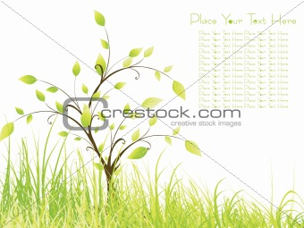 green meadow and sample text, vector