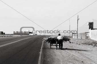 Cart Labor