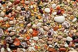 Multi Bean Soup Mix