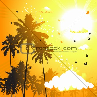 Tropical sunset, palm trees