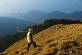 A man watch toward the mountain with golden grassland.