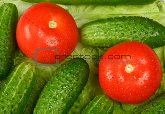 Tomatoes and cucumbres with water droplets close up