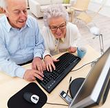 Man and woman working at home on computer