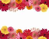 Border of flowers with space for text