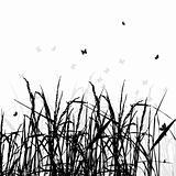Grass silhouette black, background
