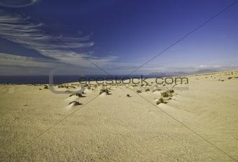 A Sand dunes landscape