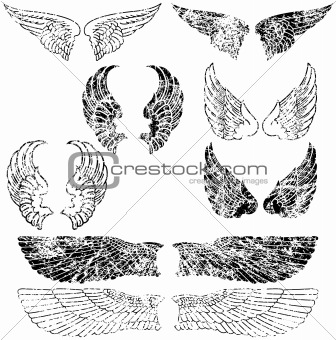 Grunge Angel Wings