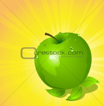 Green apple, vector illustration