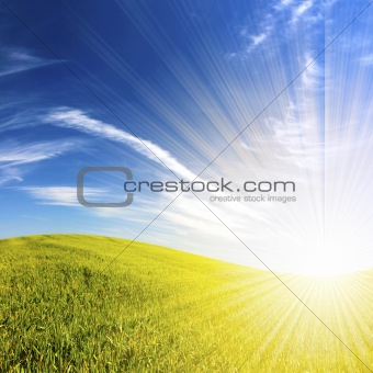beautifull landscape with green grass and blue sky