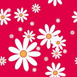 vector seamless pattern with camomiles