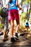 Group of kids walking upwards over a wooden bridge at their field trip