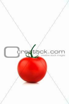 Single Tomato on White