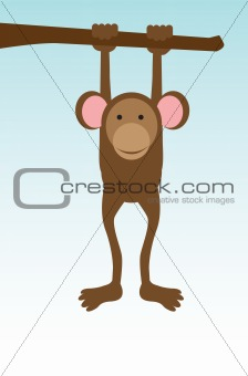 Single monkey