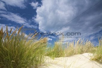 Sand dunes near the sea with a bright blue sky and clouds