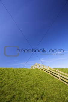 A fresh meadow in spring with a fence and a blue sky