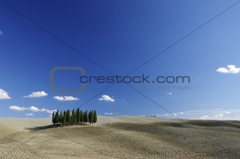 a Tuscan landscape with hills and cypresses and a blue sky