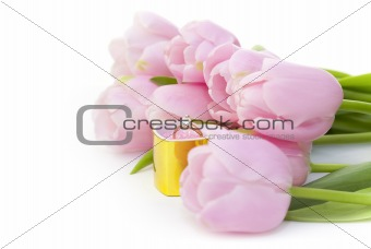 Ring and pink tulips isolated on white