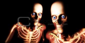 Human Bones 30