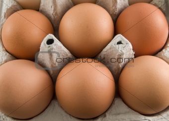 brown egg carton