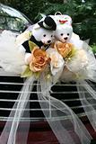 Wedding car with bear
