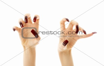 aggressive hands with long nails