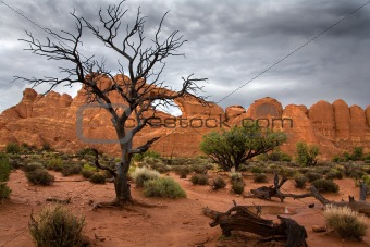Arches National Park 2