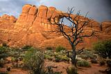 Arches National Park 3